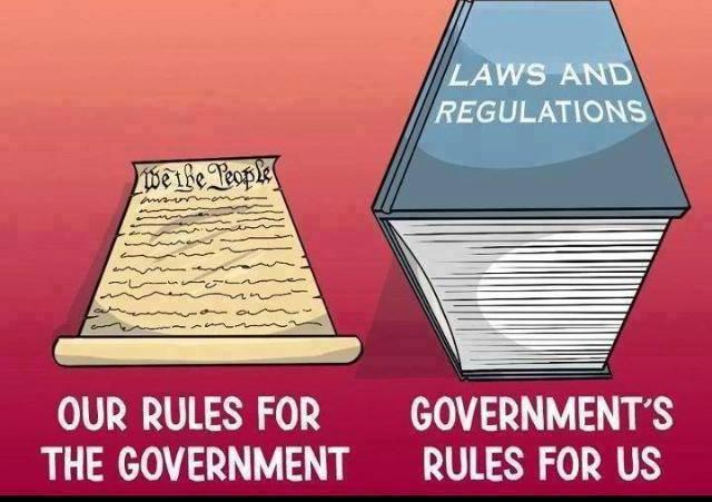 Constitution-droitpositif.jpg