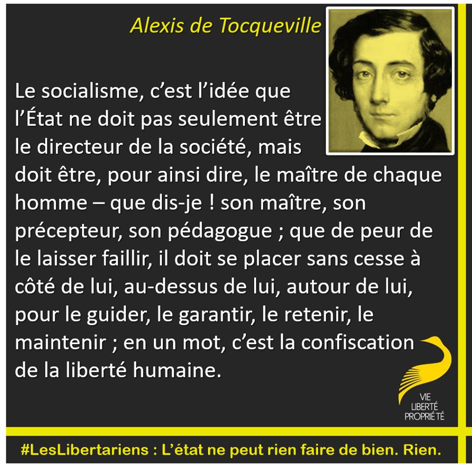 Fichier:Tocqueville-socialisme.png — Wikiberal